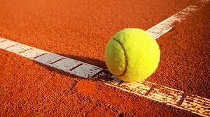 Raqueta Roland Garros Babolat